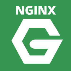 nginx-reverse-proxy
