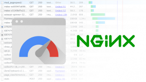 ngx_pagespeed